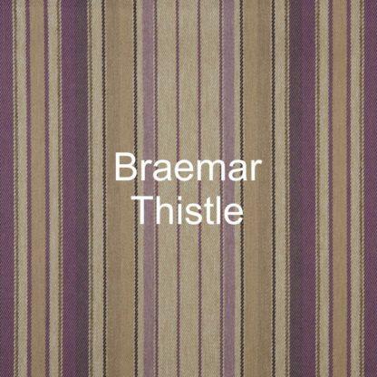 Braemar Thistle