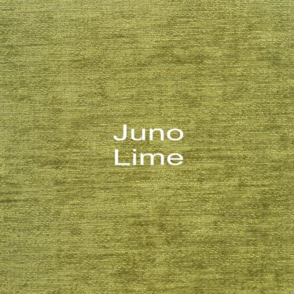 Juno Lime Fabric