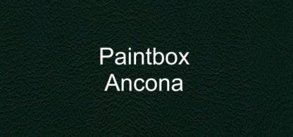 Paintbox Ancona Faux Leather Vinyl