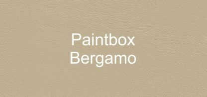 Paintbox Bergamo Faux Leather Vinyl
