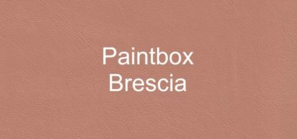 Paintbox Brescia Faux Leather Vinyl