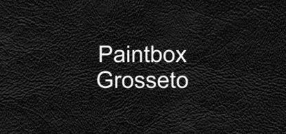 Paintbox Grosseto Faux Leather Vinyl