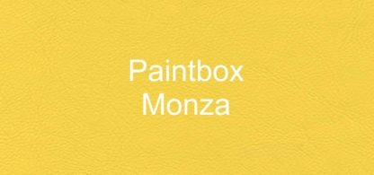 Paintbox Monza Faux Leather Vinyl