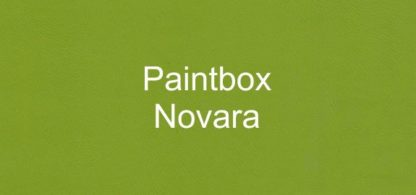 Paintbox Novara Faux Leather Vinyl