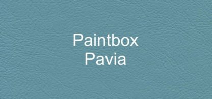 Paintbox Pavia Faux Leather Vinyl