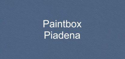 Paintbox Piadena Faux Leather Vinyl